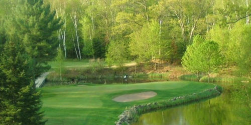 Teal Wing Golf Club