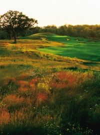 Erin Hills - 2009 to 2017 By John Ehle 10166963577e