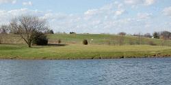 Cecelias Golf Course