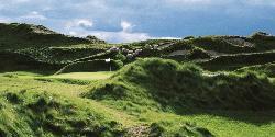 Whistling Straits - The Irish