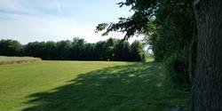 R & L Golf Farm